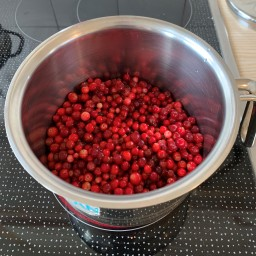 Parting thoughts and Preiselbeeren